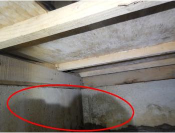 和室の基礎が水濡れ